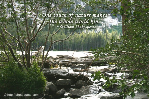 One touch of nature makes  the whole world kin. ~ William Shakespeare