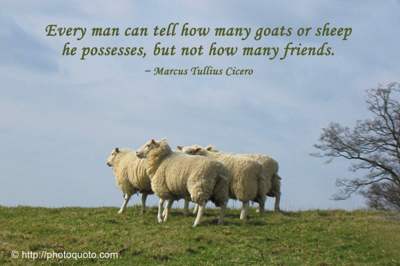 Every man can tell how many goats or sheep he possesses, but not how many friends. ~ Cicero