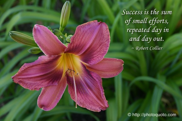 Success is the sum of small efforts, repeated day in and day out. ~ Robert Collier