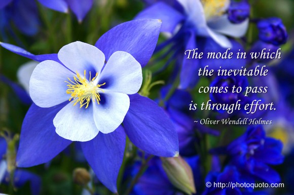 The mode in which the inevitable comes to pass is through effort. ~ Oliver Wendell Holmes