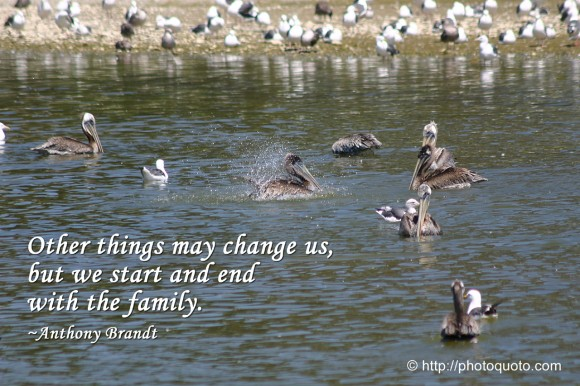 Other things may change us, but we start and end with the family. ~ Anthony Brandt