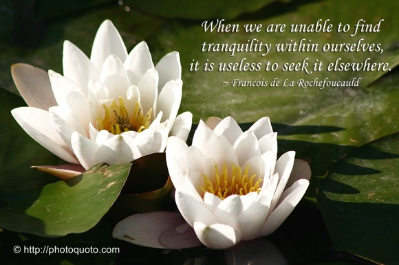 When we are unable to find tranquility within ourselves, it is useless to seek it elsewhere. ~ Francois de La Rochefoucauld