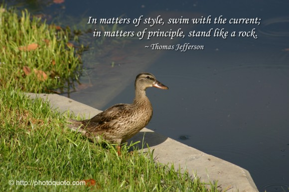 In matters of style, swim with the current; in matters of principle, stand like a rock. ~ Thomas Jefferson