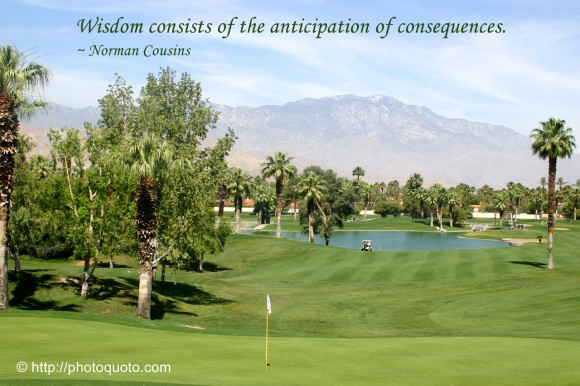 Wisdom consists of the anticipation of consequences. ~ Norman Cousins