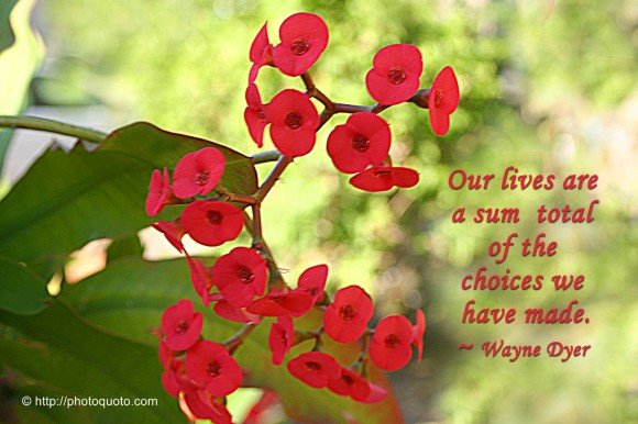 Our lives are a sum total of the choices we have made. ~ Wayne Dyer