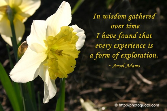 In wisdom gathered over time I have found that every experience is a form of exploration. ~ Ansel Adams