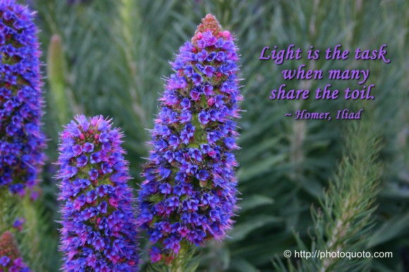 Light is the task when many share the toil. ~ Homer, Iliad