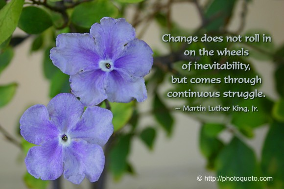 Change does not roll in on the wheels of inevitability, but comes through continuous struggle. ~ Martin Luther King, Jr.