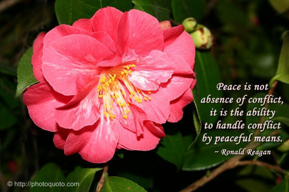 Peace is not absence of conflict, it is the ability to handle conflict by peaceful means. ~ Ronald Reagan