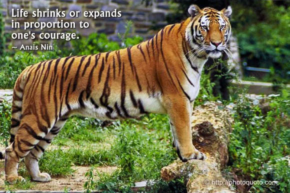 Life shrinks or expands in proportion to one's courage. ~ Anais Nin
