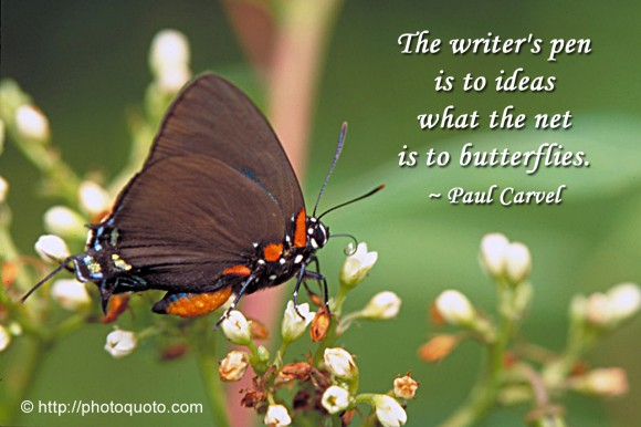 The writer's pen is to ideas what the net is to butterflies. ~ Paul Carvel