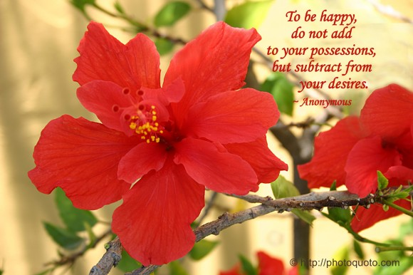 To be happy, do not add to your possessions, but subtract from your desires. ~ Anonymous