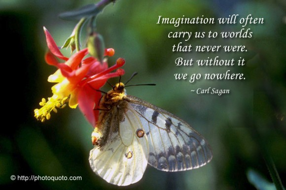 Imagination will often carry us to worlds that never were. But without it we go nowhere. ~ Carl Sagan