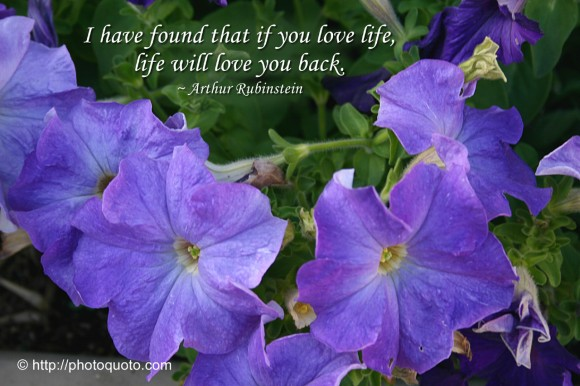 I have found that if you love life, life will love you back. ~ Arthur Rubinstein