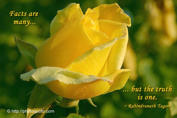 Facts are many... but the truth is one. ~ Rabindranath Tagore