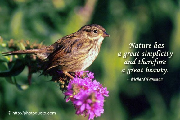 Nature has a great simplicity and therefore a great beauty. ~ Richard Feynman