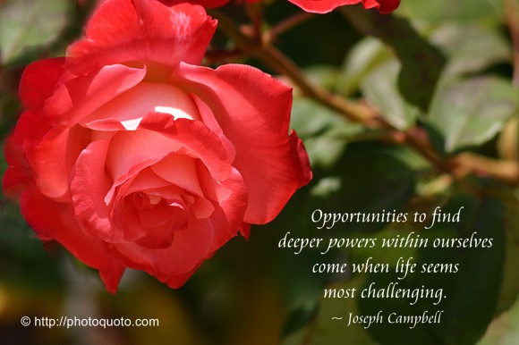 Opportunities to find deeper powers within ourselves come when life seems most challenging. ~ Joseph Campbell