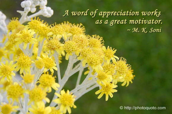 A word of appreciation works as a great motivator. ~ M. K. Soni