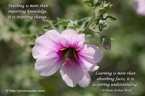 Teaching is more than imparting knowledge, it is inspiring change. Learning is more than absorbing facts, it is acquiring understanding. ~ William Arthur Ward