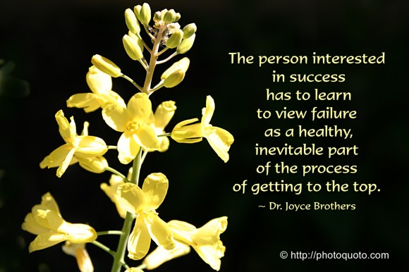 The person interested in success has to learn to view failure as a healthy, inevitable part of the process of getting to the top. ~ Dr. Joyce Brothers