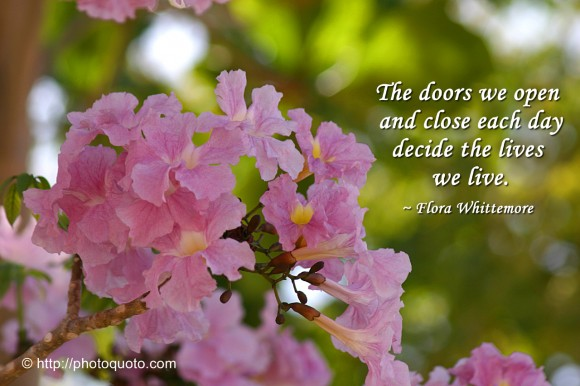 The doors we open and close each day decide the lives we live. ~ Flora Whittemore
