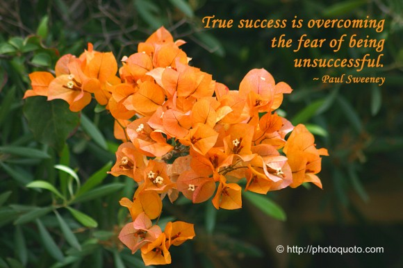 True success is overcoming the fear of being unsuccessful. ~ Paul Sweeney