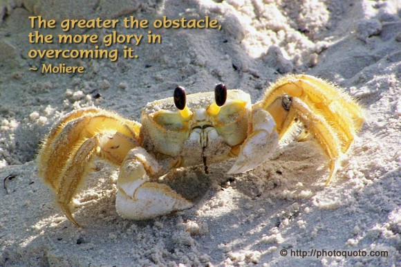 The greater the obstacle, the more glory in overcoming it. ~ Moliere