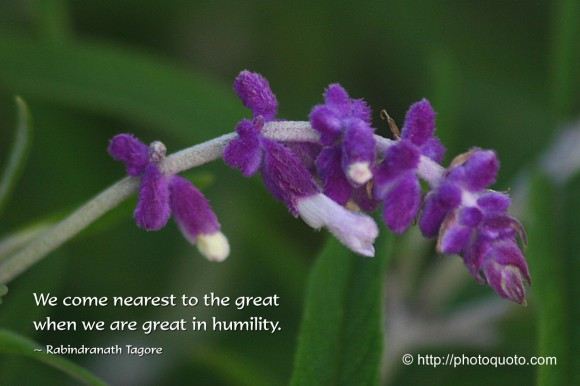 We come nearest to the great when we are great in humility. ~ Rabindranath Tagore