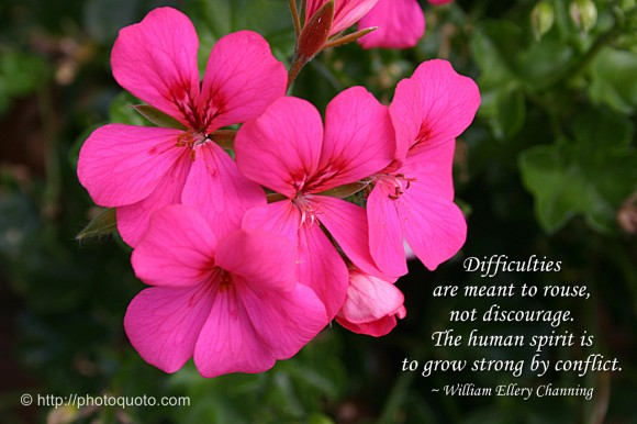 Difficulties are meant to rouse, not discourage. The human spirit is to grow strong by conflict. ~ William Ellery Channing