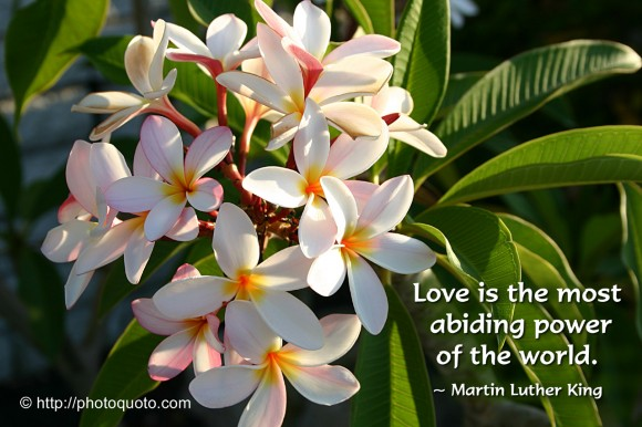 Love is the most abiding power of the world. ~ Martin Luther King