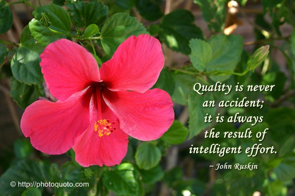 Quality is never an accident; it is always the result of intelligent effort. ~ John Ruskin