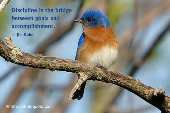 Discipline is the bridge between goals and accomplishment. ~ Jim Rohn