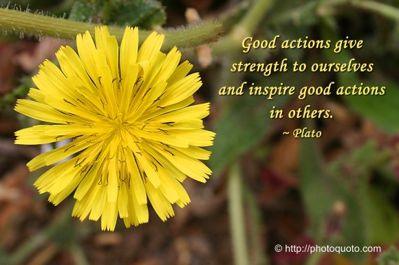 Good actions give strength to ourselves and inspire good actions in others. ~ Plato