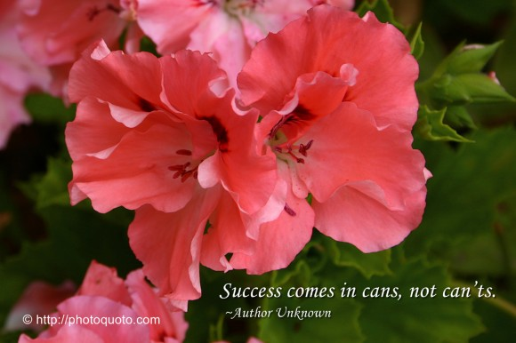 Success comes in cans, not cant's. ~ Author Unknown