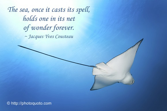 The sea, once it casts its spell, holds one in its net of wonder forever. ~ Jacques Yves Cousteau