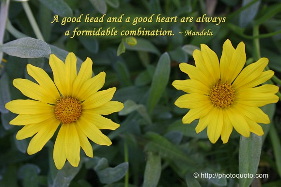 A good head and a good heart are always a formidable combination. ~ Mandela