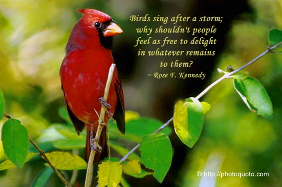 Birds sing after a storm; why shouldn't people feel as free to delight in whatever remains to them? ~ Rose F. Kennedy