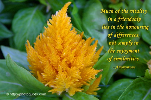 Much of the vitality in a friendship lies in the honouring of differences, not simply in the enjoyment of similarities. ~ Anonymous
