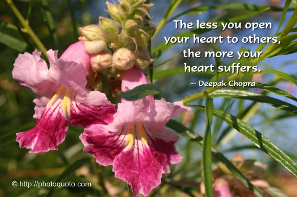 The less you open your heart to others, the more your heart suffers. ~ Deepak Chopra