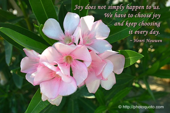 Joy does not simply happen to us. We have to choose joy and keep choosing it every day. ~ Henri Nouwen