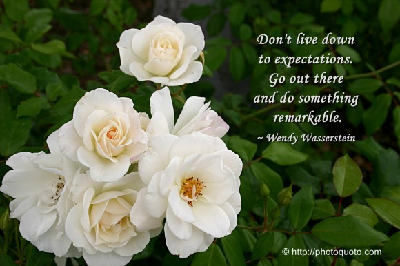 Don't live down to expectations.  Go out there and do something remarkable. ~ Wendy Wasserstein