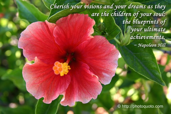 Cherish your visions and your dreams as they are the children of your soul, the blueprints of your ultimate achievements. ~ Napoleon Hill