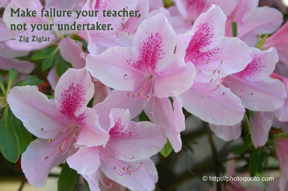 Make failure your teacher, not your undertaker. ~ Zig Ziglar