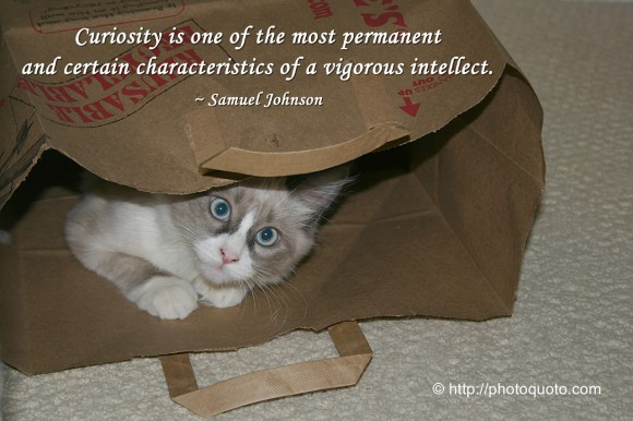 Curiosity is one of the most permanent and certain characteristics of a vigorous intellect. ~ Samuel Johnson