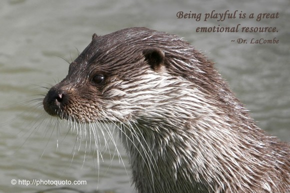 Being playful is a great emotional source. ~ Dr. LaCombe