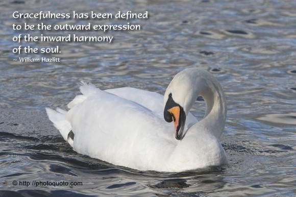 Gracefulness has been defined to be the outward expression of the inward harmony of the soul. ~  William Hazlitt