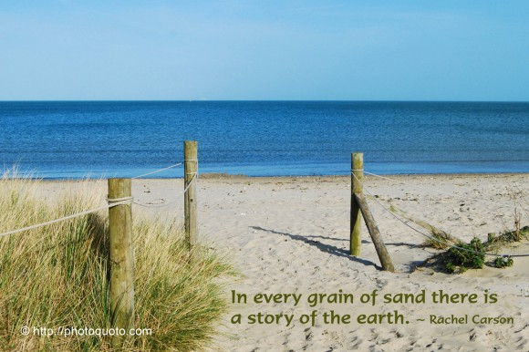 In every grain of sand there is a story of the earth. ~ Rachel Carson