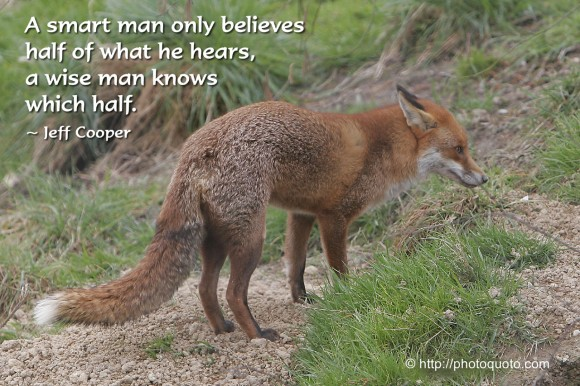 A smart man only believes half of what he hears, a wise man knows which half. ~ Jeff Cooper