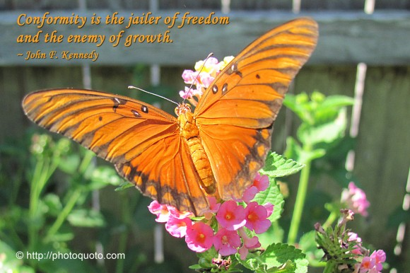 Conformity is the jailer of freedom and the enemy of growth. ~  John F. Kennedy