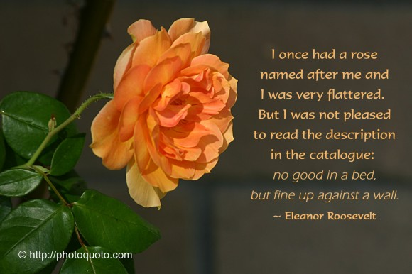 I once had a rose named after me and I was very flattered. But I was not pleased to read the description in the catalogue: no good in a bed, but fine up against a wall. ~ Eleanor Roosevelt